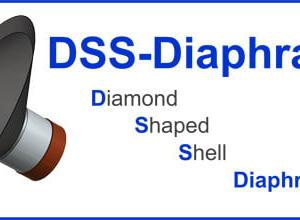 17cm超硬振動板(DSSダイアフラム)ユニット その9