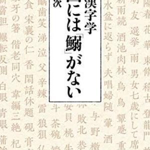 本と雑誌 56冊 『遊遊漢字学 中国には「鰯」がない』