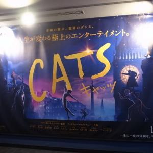 CATS キャッツ
