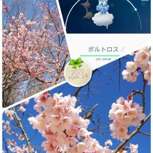 3月24日(火)
