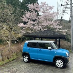 神埼市の宝珠寺へ