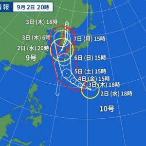台風9号、、、