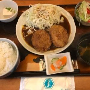 サラメシ・ゴロメンチ定食@鳥波多からの、ペットショップ。