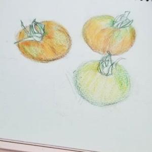 初めての・・・色鉛筆画