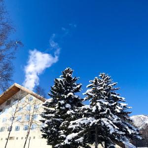 マイナス25度の世界☆スキー大好き一家にぴったりだった富良野プリンスホテル