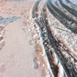 カシミアストール2種お試し☆北海道はあっという間に雪の世界です