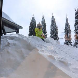 大雪の札幌☆子らは元気に庭駆け回り 母はのんびりおうち時間