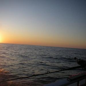 釧路沖はたら大漁