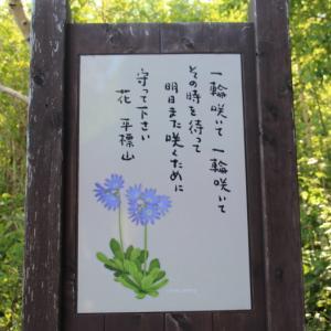 平標山 2018/06/03 [登り編]