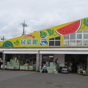冨里スイカ:千葉県は全国スイカの名産地 第二位