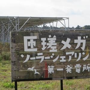 匝瑳メガソーラーシェアリングの収穫祭<br />