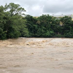 飛騨川増水