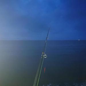 厳しい釣りが続いてます、、、