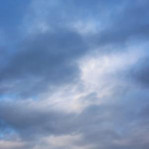 2019_12_10  バード倶楽部野鳥写真展
