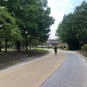 『春日公園』を早朝ウォーキングしてきました☆彡
