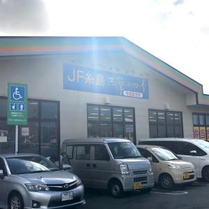 『Go To 糸島』🤩🚘👍
