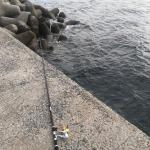 今日も早朝から『釣り』に行ってきました〜‼️🐟😎