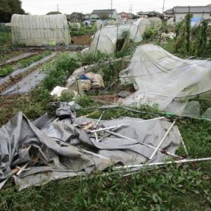 9月21日・ビニールハウスなどの解体撤去作業。