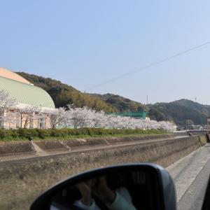【長崎旅行】稲佐山に到着しました。