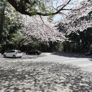 【長崎旅行】石岳展望台からの景色はラストサムライに使われたそうです。