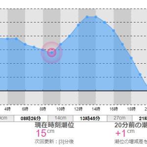 釣具ランキング~2020/05/25