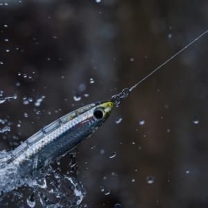釣具ランキング~2021/04/28
