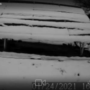 雪積もりました・・・
