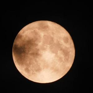 中秋の名月といえば・・・