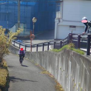 さくらライド 2020/04/04