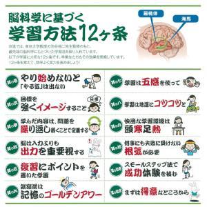 『脳科学に基づく学習法12ケ条』
