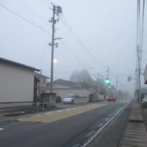 今朝は霧のロンドン並み・・。