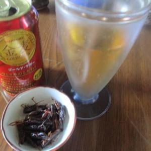 イナゴと缶ビール