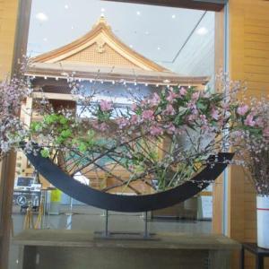 「啓翁桜」と雪片付け