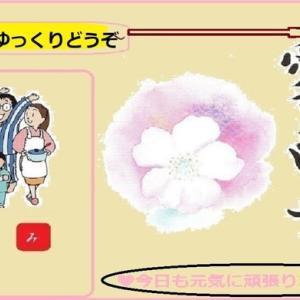 2021・05・31・ひろし曾爺の自宅生涯学習~🌺花壇の花GIF動画Show!