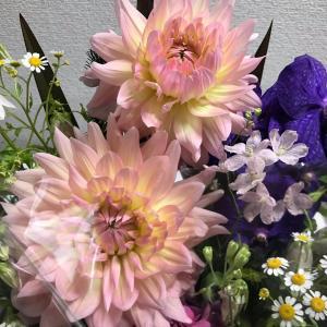 9月9日重陽の節句 菊の節句