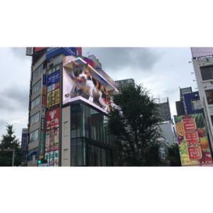 新宿東口の大きな猫ちゃん<br />