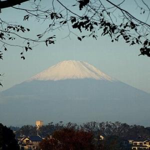 秋晴れの富士を観ながら朝散歩