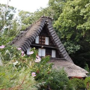 生田緑地~日本民家園にて
