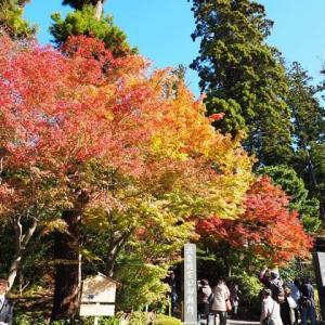 鎌倉紅葉散歩~円覚寺