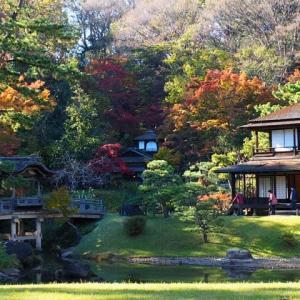 横浜三溪園の紅葉散策その②
