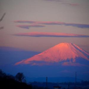 朝日に輝く紅富士と朝の月