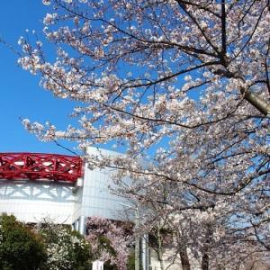 卯月~春景色