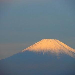 朝散歩で観る冠雪の富士