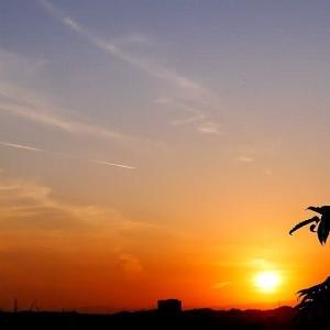 釣瓶落としの秋の夕陽