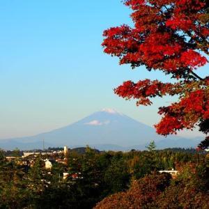 富士見散歩の愉しみ