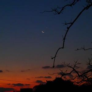 夜明けの空で細い月と金星が大接近!