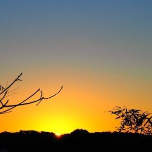 一陽来復~冬至の朝日と富士