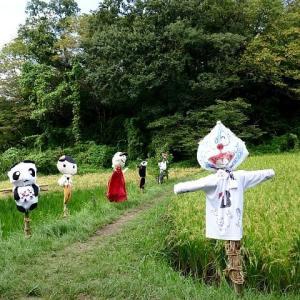 田んぼの案山子と雀