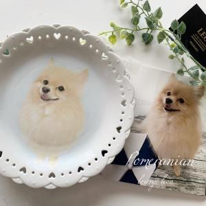 【My works】愛犬の絵ができました。