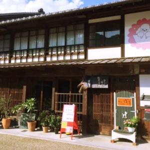 【初ドックカフェ】関にあるドックカフェ「ぽ庵」さんへ♡